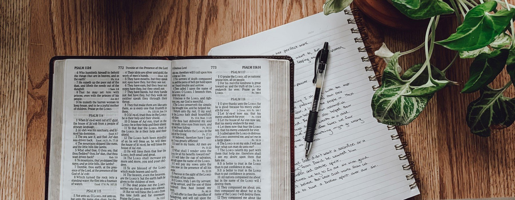 Bible reading notes for older people, what a great idea!
